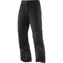 Womens Odysee GTX Pants