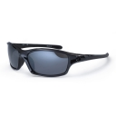 Daytona Polarised Sunglasses