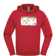 Mens Mountain Postcard Pullover Hoodie