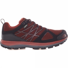 Mens Litewave GTX Shoe