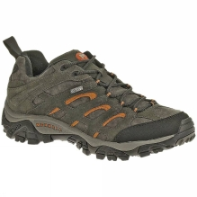 Mens Moab Leather Waterproof Shoe