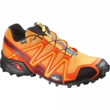 Mens Speedcross 3 GTX Shoe