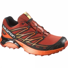 Mens Wings Flyte GTX Shoe