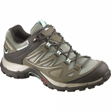 Womens Ellipse GTX Shoe