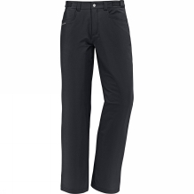 Mens Trenton Pants II