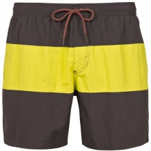 Mens Plato Beachshorts