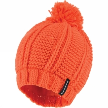 Recognition Beanie