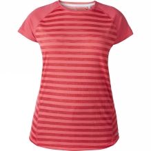 Womens Stripe Short Sleeve Crew Baselayer
