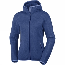 Women's Altitude Aspect Hooded Fleece Jacket