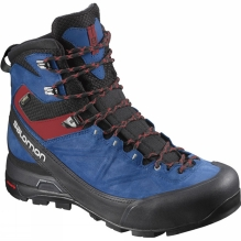 Mens X Alp MTN GTX Boot
