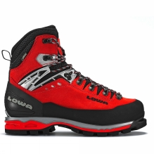 Mens Mountain Expert GTX Evo Boot