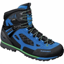 Mens Ridge High GTX Boot