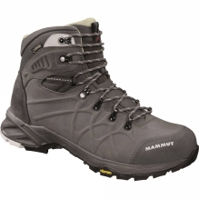 Mens Mercury Advanced High II LTH GTX