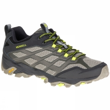 Mens Moab FST Shoe