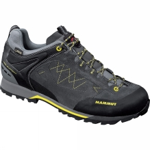 Mens Ridge Low WL GTX Boot