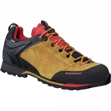 Mens Ridge Low GTX Shoe