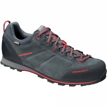 Mens Wall Guide Low GTX Shoe