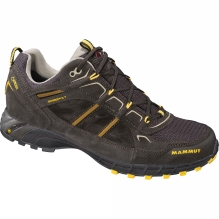 Mens T Element Low GTX Shoe