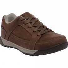 Mens Stanly Low Shoe