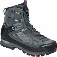 Womens Alto Guide High GTX Boot