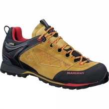Womens Ridge Low GTX Shoe