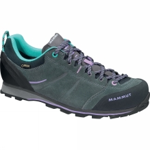 Womens Wall Guide Low Gore-Tex Shoes