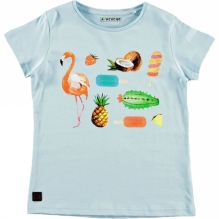 Girls Fruit Flamingo T- Shirt