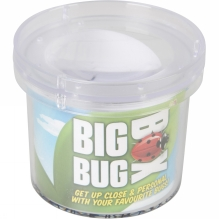 Big Bug Box