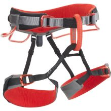 Momentum DS Harness