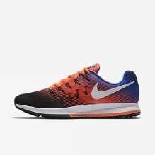 Air Zoom Pegasus 33 Shoe