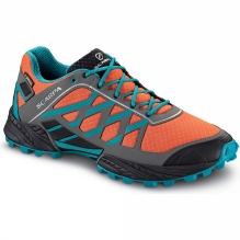 Mens Neutron GTX Shoe