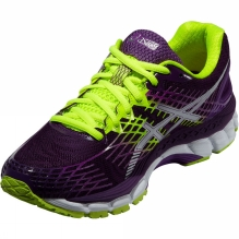 Womens Gel-Nimbus 17 Shoe