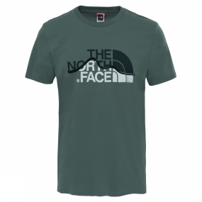 The North Face Mens Mountain Line Tee Thyme