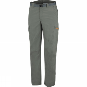 columbia-mens-silver-ridge-cargo-pants-cypress-valencia
