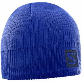 Salomon Salomon Logo Beanie Surf The Web