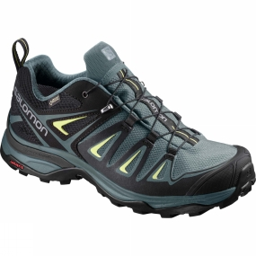 Salomon Salomon Womens X-Ultra 3 GTX Shoe Arctic/Darkest Spruce/Sunny Lime
