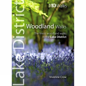 lake-district-top-10-walks-woodland-walks