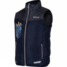 Regatta Boys Earthbreaker Insulated Gillet