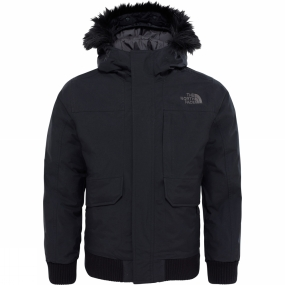 The North Face Bos Gotham Down Jacket