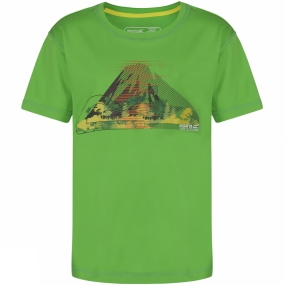 Regatta Youths Alvarado Tee Age 14+ Fairway Green
