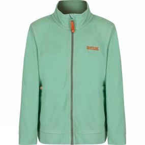 Regatta Kids Harlin Fleece Age 14+
