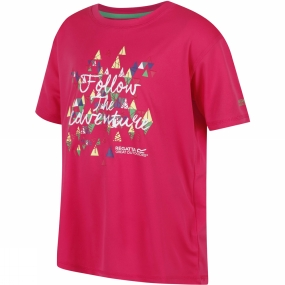 Regatta Kids Alvarado III T-Shirt