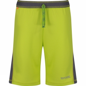 Regatta Boys Resolver Shorts Age 14+