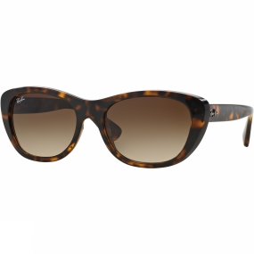 rb4227-sunglasses