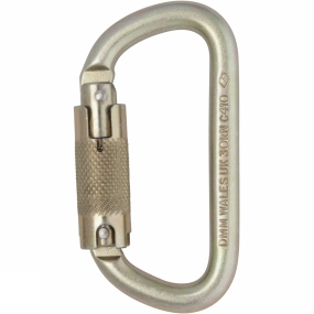 DMM 10mm Equal D Steel Locksafe Karabiner