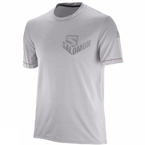 Salomon Salomon Mens Pulse Short Sleeve Tee Alloy