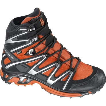 Mens Wings Sky GTX 2 Boots