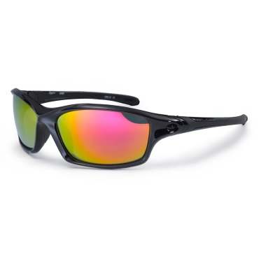 Daytona Sunglasses