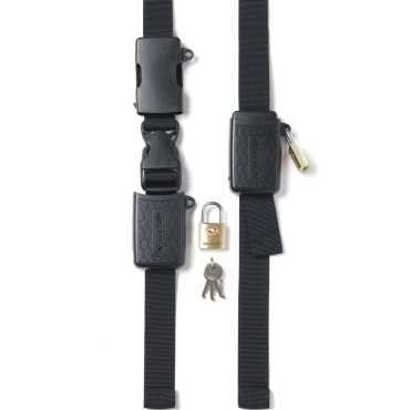 Bucklesafe 100 Lock