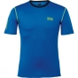 Helly Hansen Mens Dry Stripe Tee Cobalt Blue/Neon Green